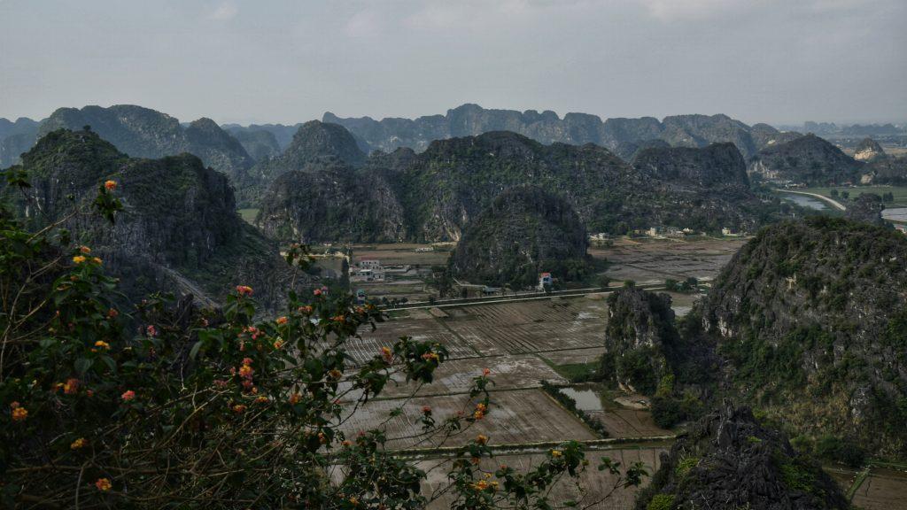 Ausblick vom Hong Mua Viewpoint auf die Reisfelder